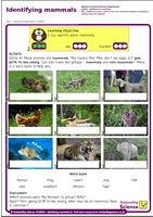 Outstanding Science Year 1 - Animals, including humans | Identifying mammals