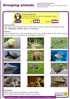Outstanding Science Year 1 - Animals, including humans | Grouping animals