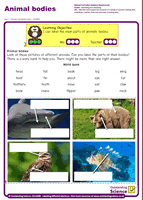 Outstanding Science Year 1 - Animals, including humans | Animal bodies