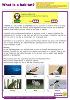 Outstanding Science Year 2 - Living things and their habitats | Animals and their habitats