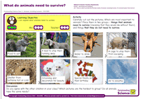 Outstanding Science Year 2 - Animals, including humans | What do animals need to survive