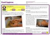 Outstanding Science Year 2 - Animals, including humans | Food hygiene