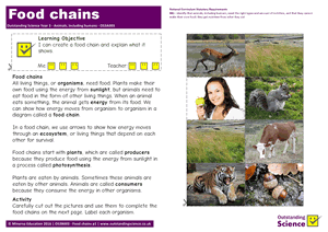 Outstanding Science Year 3 - Animals, including humans | Food chains
