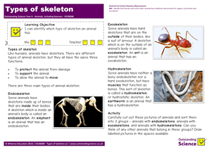 Outstanding Science Year 3 - Animals, including humans | Types of skeleton