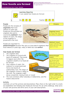 Outstanding Science Year 3 - Rocks | How fossils are formed