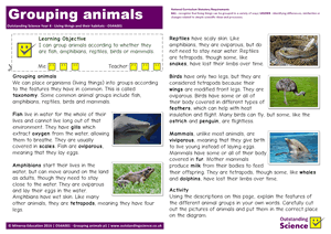 Outstanding Science Year 4 - Living things and their habitats | Grouping animals