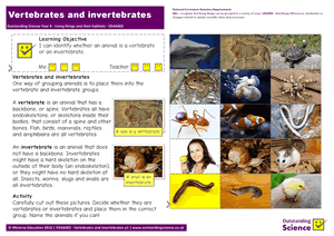 Outstanding Science Year 4 - Living things and their habitats | Vertebrates and invertebrates