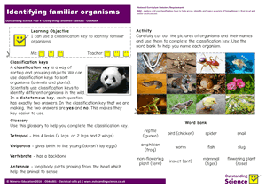 Outstanding Science Year 4 - Living things and their habitats | Identifying familiar organisms