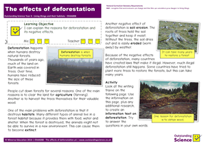 Outstanding Science Year 4 - Living things and their habitats | The effects of deforestation