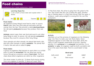 Outstanding Science Year 4 - Animals, including humans | Food chains
