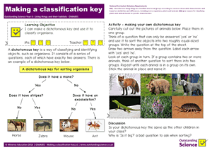 Outstanding Science Year 6 - Living things and their habitats | Making a classification key