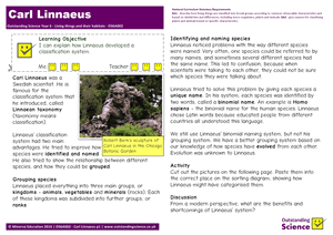 Outstanding Science Year 6 - Living things and their habitats | Carl Linnaeus