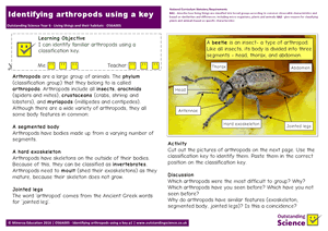 Outstanding Science Year 6 - Living things and their habitats | Identifying arthropods using a key