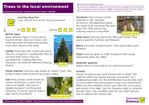 Outstanding Science Year 6 - Living things and their habitats | Trees in the local environment