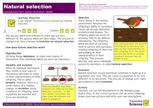 Outstanding Science Year 6 - Evolution and inheritance | Natural Selection